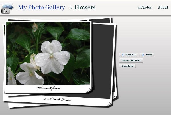 Flex Photo Album using Custom Page Flip Effect and Deep Linking Home
